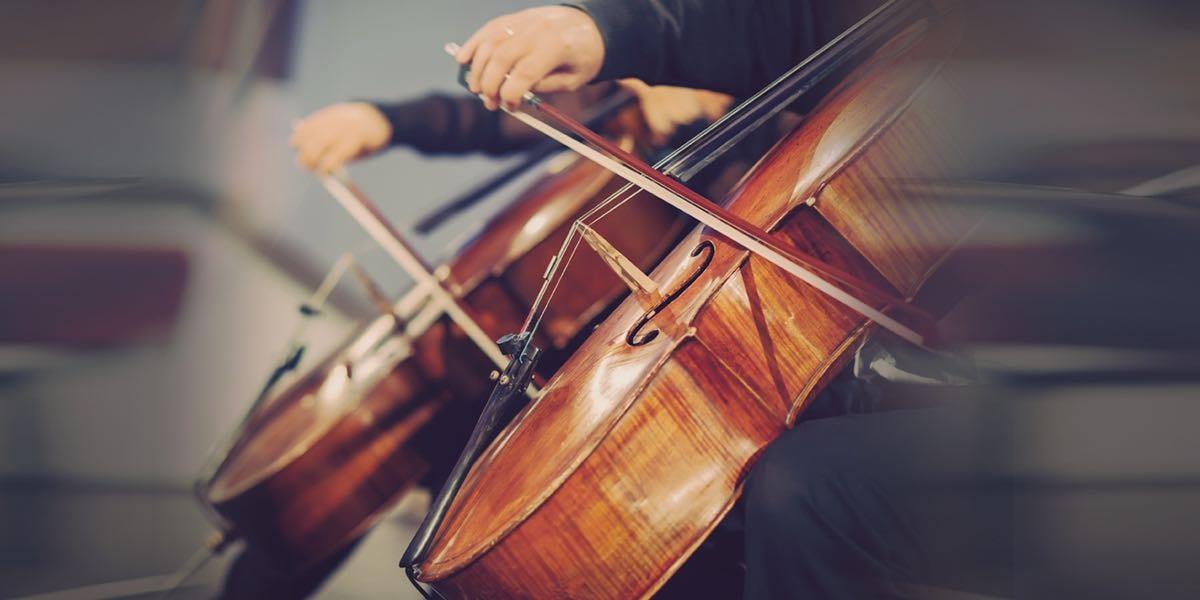 大提琴表演的專業服務